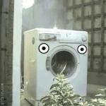 세탁기의 최후. 주인 놈아~